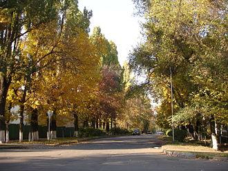 ALA_Pushkin_street