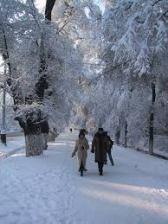 Almatysnow