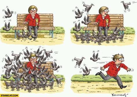 angela-merkel-feeding-pigeons-too-many-running-away