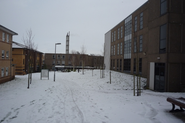 Alcuin_College_in_Snow_-_geograph.org.uk_-_1691889